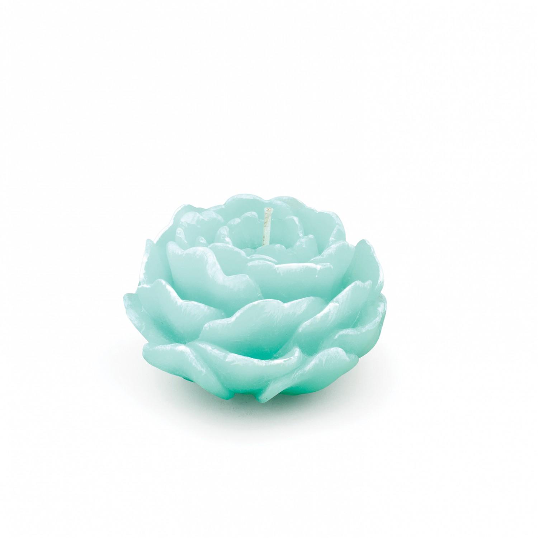 Vela flor Peónia cor verde